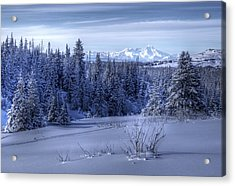 Acrylic Print featuring the photograph Alaskan Winter Landscape by Michele Cornelius