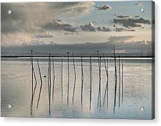 Albufera Gris. Valencia. Spain Acrylic Print