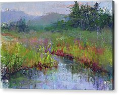 Alder Meadow Morning Acrylic Print