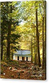Alfred Reagan House Acrylic Print by Lena Auxier