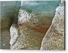 Algal Bloom Acrylic Print by Peter Chadwick
