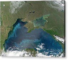 Algal Blooms In The Black Sea Acrylic Print by NASA / Science Source