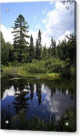 Algonquin Odes Two Acrylic Print by Alan Rutherford