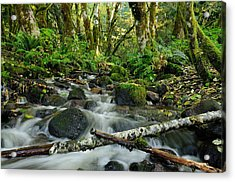 Alice Creek Acrylic Print
