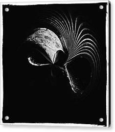 Alien Mask Acrylic Print by Skip Nall