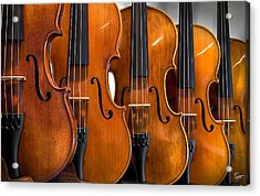 Acrylic Print featuring the photograph All In A Row by Endre Balogh