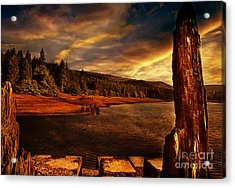 All That's Left Acrylic Print by Nigel Hatton