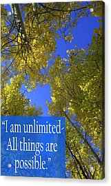 All Things Are Possible Acrylic Print by Dana Kern