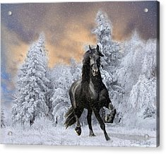 Allegro Coming Home Acrylic Print by Tom Schmidt