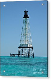 Alligator Lighthouse Acrylic Print
