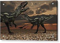 Allosaurus Dinosaurs Stalk Their Next Acrylic Print by Mark Stevenson