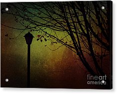 Almost Dark Acrylic Print