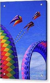 Go Fly A Kite 8 Acrylic Print