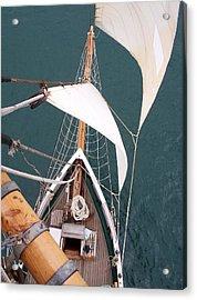Aloft Acrylic Print by David Barringhaus