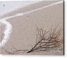 Alone - Ile De La Reunion Acrylic Print by Francoise Leandre