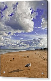 Alone At Last Acrylic Print