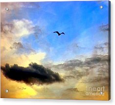 Alone In A Big Sky Acrylic Print