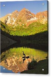 Alone On A Rock Acrylic Print