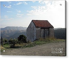 Acrylic Print featuring the photograph Alone On The Hill by Arlene Carmel