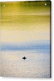 Alone On The Lake Acrylic Print