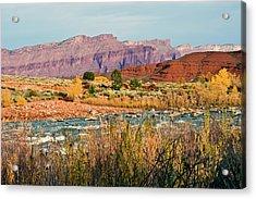Acrylic Print featuring the photograph Along The Colorado River by Geraldine Alexander