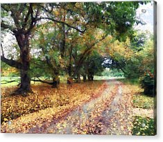 Along The Path Under The Trees Acrylic Print by Susan Savad