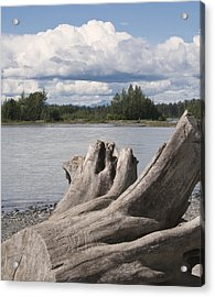 Along The River Acrylic Print by George Hawkins