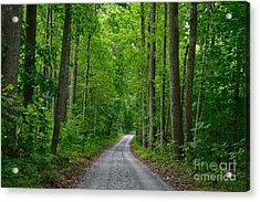 The Road To Thomas Jefferson's House Acrylic Print