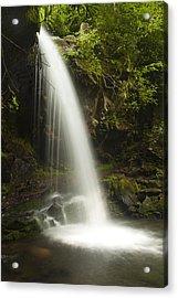 Alongside Grotto Falls Acrylic Print by Andrew Soundarajan