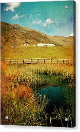 Alpe Nemes In South Tyrol Acrylic Print by Angela Bruno