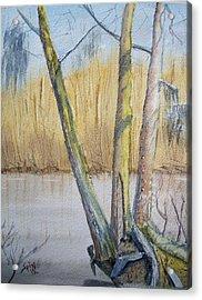 Altamaha River Three Trees Acrylic Print by Spencer  Joyner