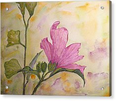 Althea Acrylic Print