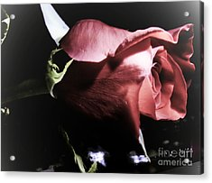 Acrylic Print featuring the photograph Always And Forever 2 by Janie Johnson