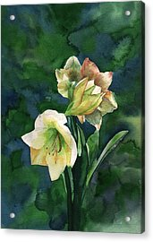 Acrylic Print featuring the painting Amaryllis by Sharon Mick