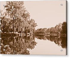 Acrylic Print featuring the photograph Amber Reflection by Sara Frank