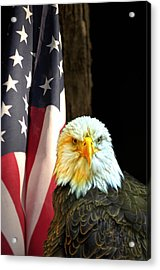 Acrylic Print featuring the photograph American Eagle And American Flag by Randall Branham