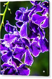Amethyst Glistens Acrylic Print by Stacy Michelle Smith