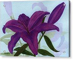 Amethyst Lily Acrylic Print by Vikki Wicks