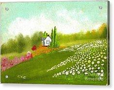 Among Daisies Acrylic Print