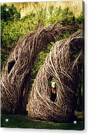 Among The Hidden Acrylic Print by Laura George