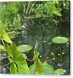 Among The Lily Pads Acrylic Print