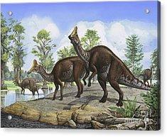 Amurosaurus Riabinini Dinosaurs Grazing Acrylic Print by Sergey Krasovskiy