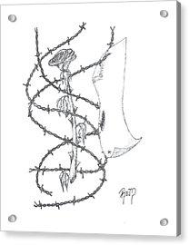 An Abstract Rose - Sketch Acrylic Print by Robert Meszaros