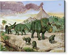 An Albertosaurus Observes A Family Acrylic Print