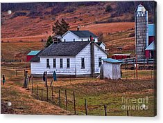 An Amish Farm Acrylic Print by Tommy Anderson