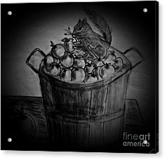 Acrylic Print featuring the drawing An Apple A Day by Ayasha Loya