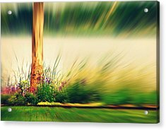 An Explosion Of Beauty Acrylic Print by Shalini George