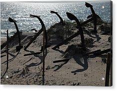 Anchor Beach 15 Acrylic Print by Jez C Self