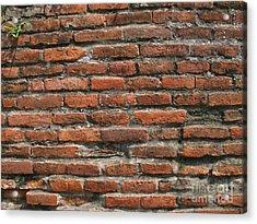Ancient Brick Wall Acrylic Print by Yali Shi