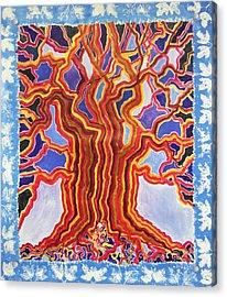 Ancient Walnut Acrylic Print by Alain Guiguet